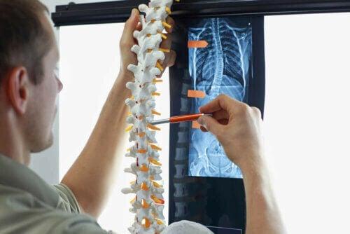 Exame da coluna vertebral