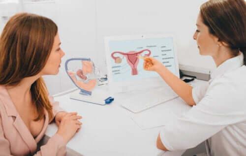 Como saber se estou ovulando?