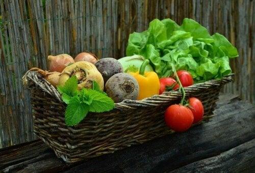 Dieta para pessoas com câncer