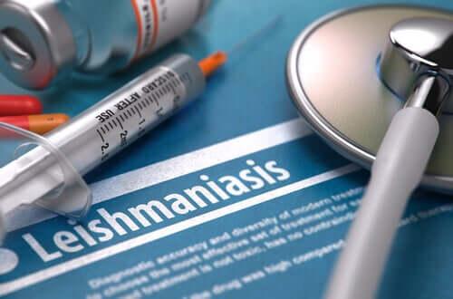 A leishmaniose é contagiosa?