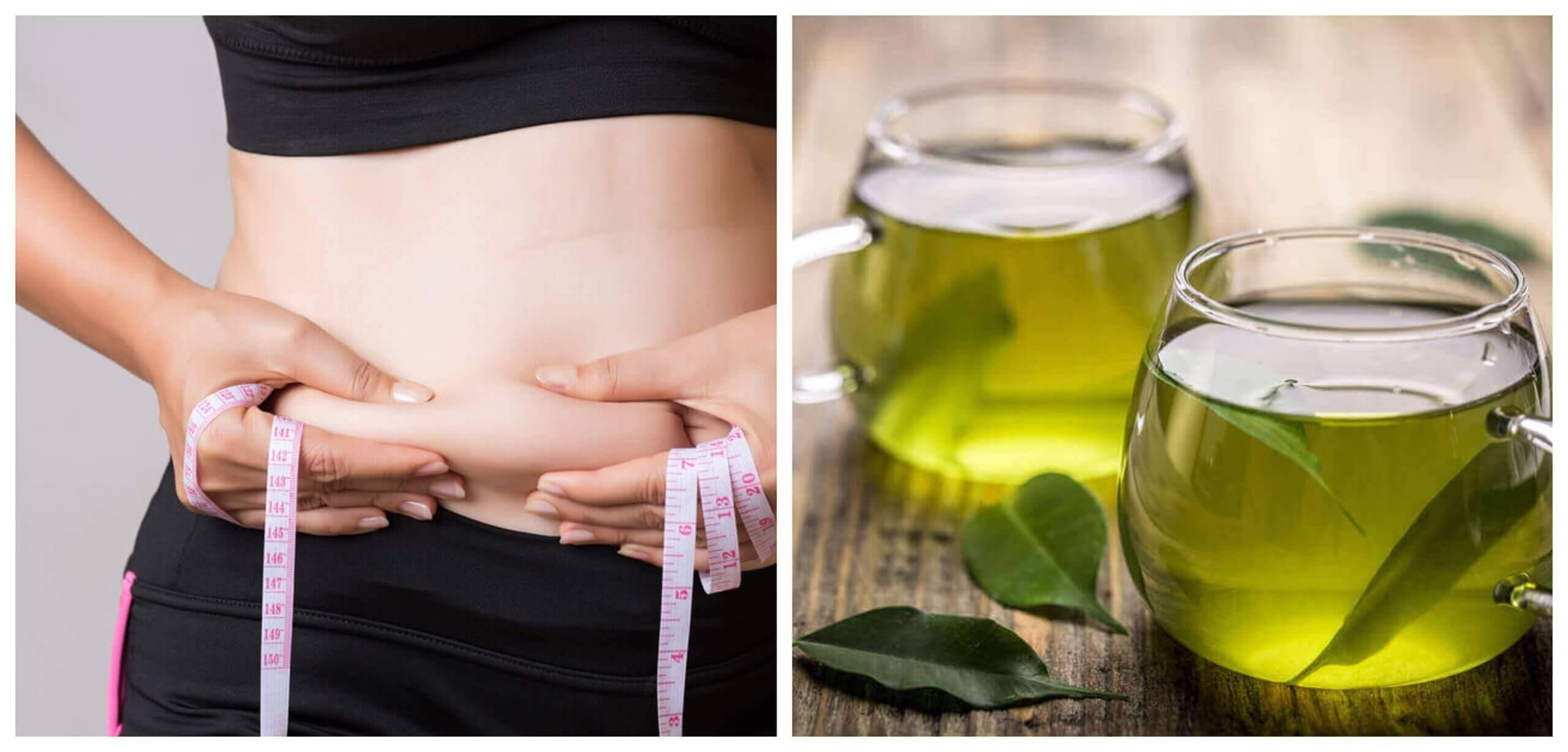 Chá verde para perder gordura