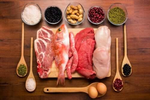 Qual é a função das proteínas no corpo?