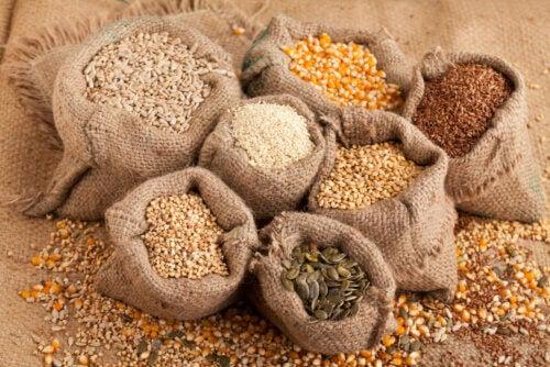 Tipos de sementes na dieta
