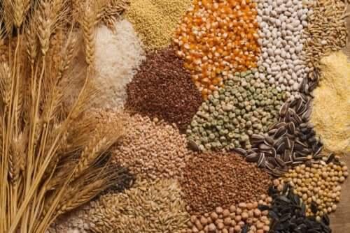 3 dicas para incluir sementes na dieta
