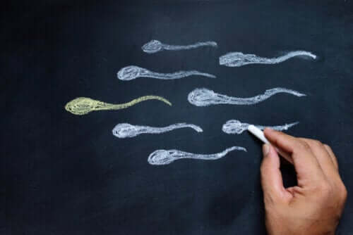 6 maneiras de aumentar a testosterona