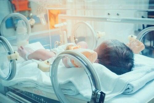 Bebê prematuro internado