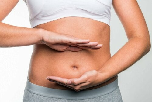 Dieta rica em gordura e risco de câncer colorretal