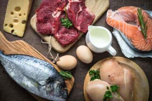 O que são as proteínas e quais são as suas funções?