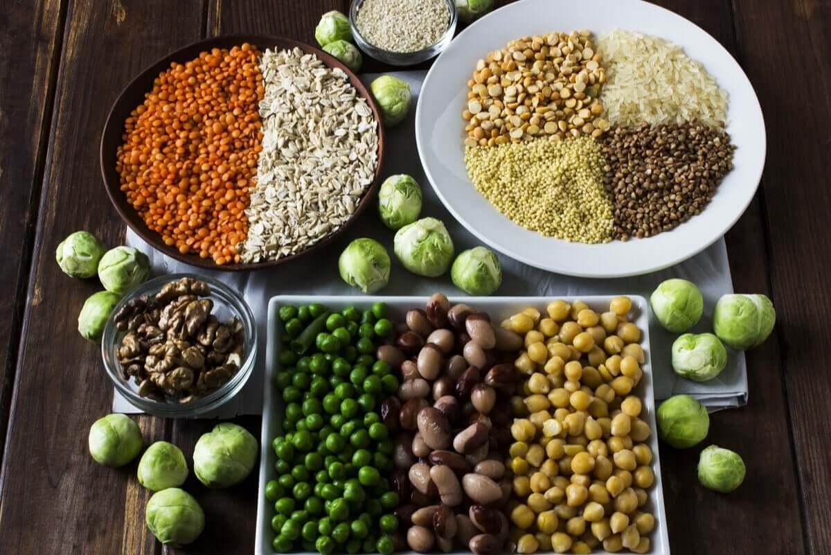 Proteínas de fontes vegetais