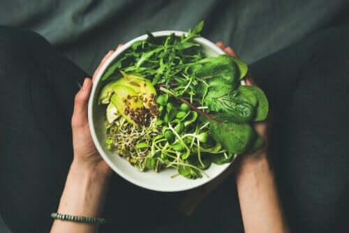 Qual é a diferença entre vegano, vegetariano e flexitariano?