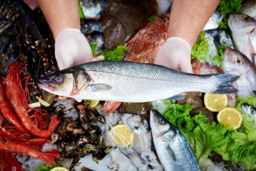 Consumo de peixes