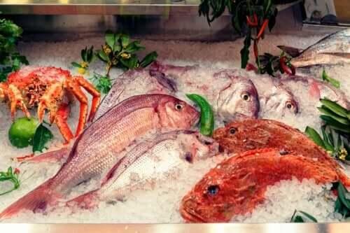 Peixes que devemos evitar