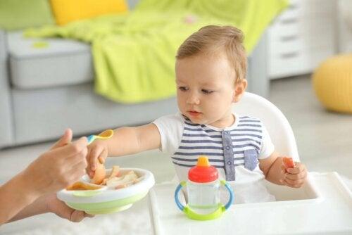 Oferecer alimentos ao bebê