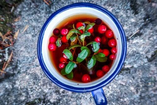 Infusão de cranberry
