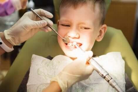Os tratamentos odontológicos devem ser precoces