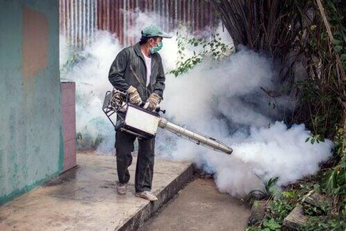 Doenças transmitidas por mosquitos
