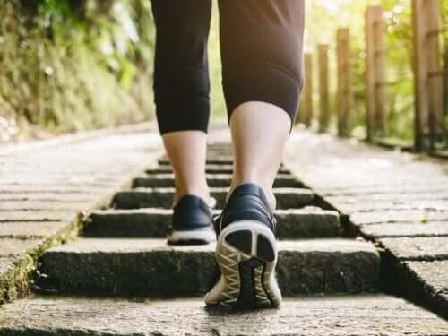 Caminhar depois de comer é um hábito saudável?