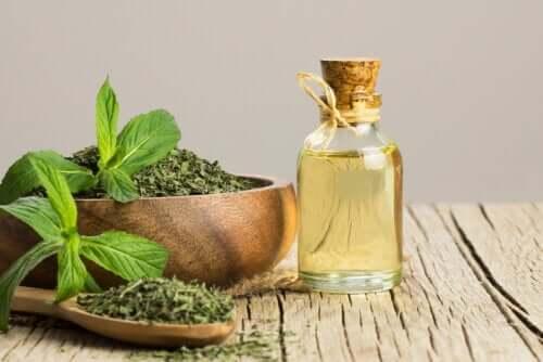 O óleo de hortelã-pimenta ajuda no tratamento da síndrome do intestino irritável?