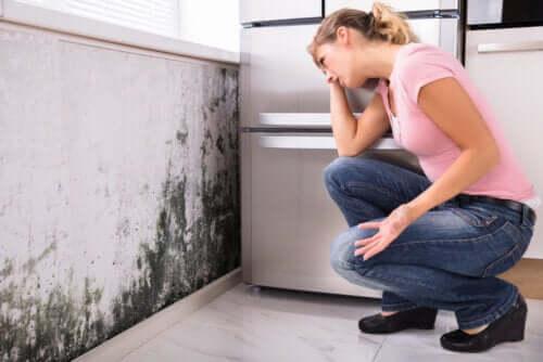 O mofo em casa causa problemas de saúde?