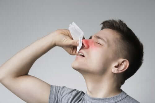 Pólipos no nariz: sintomas, causas e tratamento
