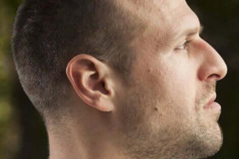 Os tipos de nariz dependem de vários fatores