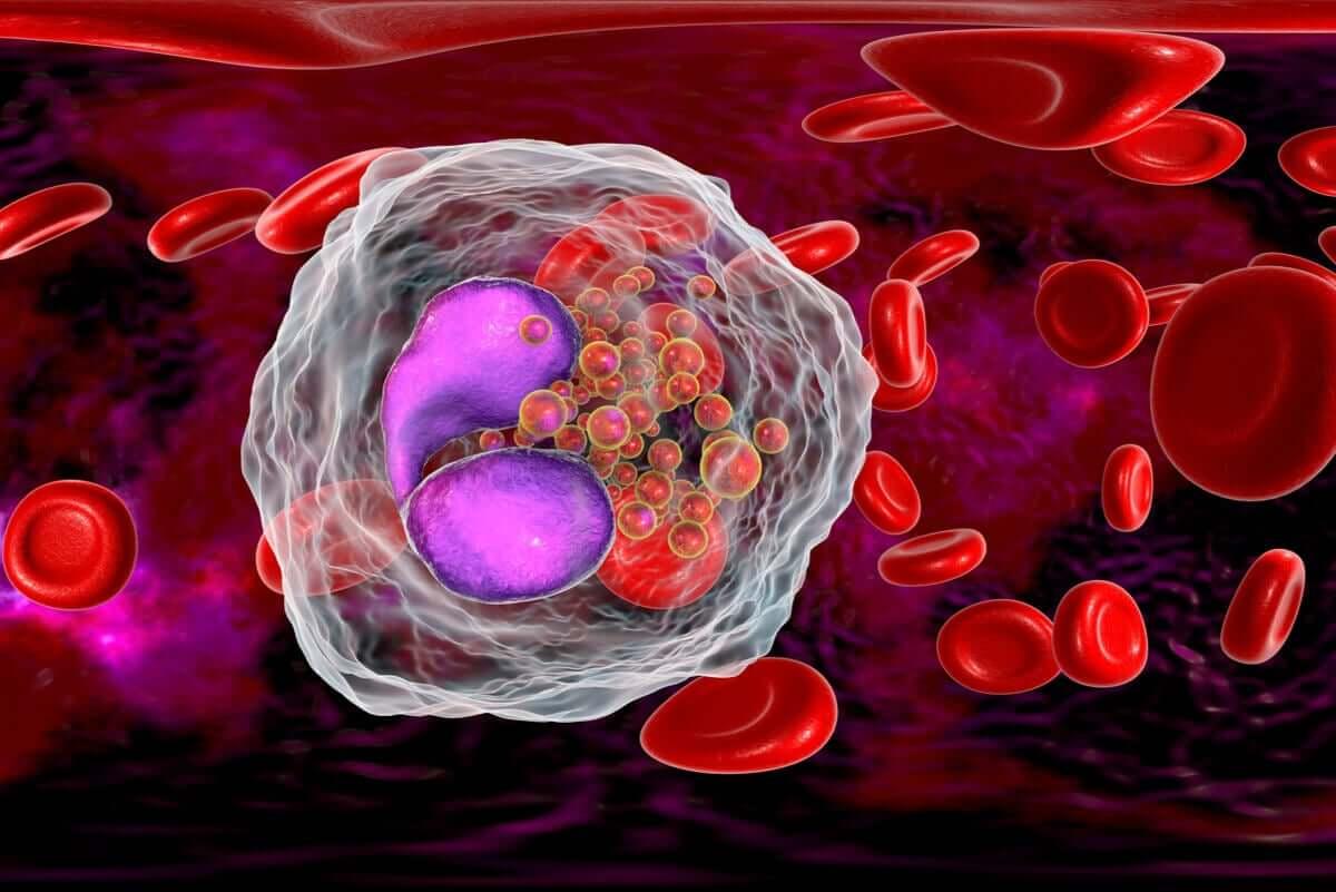 Sistema imunológico de crianças