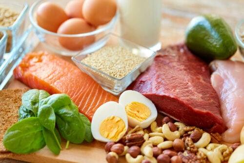 Fontes de proteína na dieta low carb