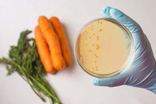 O que são as medidas de segurança alimentar?