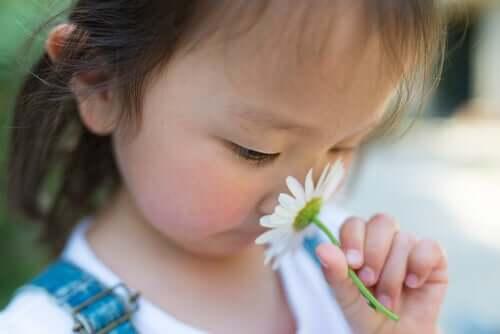 Hiperosmia, a sensibilidade excessiva a odores