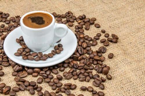 Os polifenóis do café e a diabetes