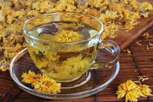 Chá de crisântemo: benefícios e precauções