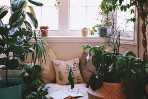Ideias para criar um canto relaxante em casa