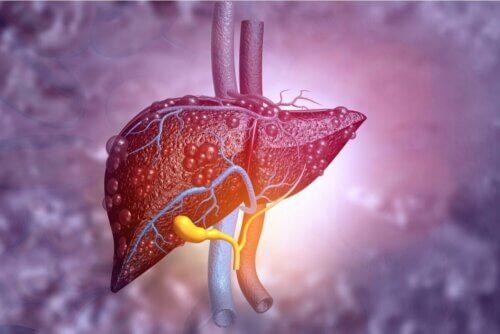 Saúde do fígado