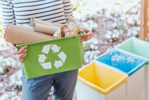 A importância de reciclar