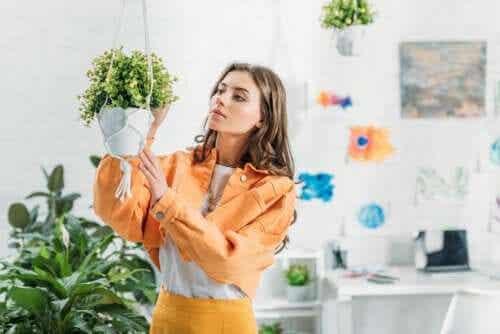 Como fazer um vaso artesanal suspenso para pendurar suas plantas?