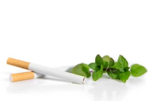 Os cigarros mentolados podem ser mais prejudiciais do que os normais