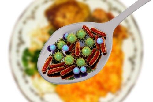 Microrganismos patogênicos que podem estar nos alimentos