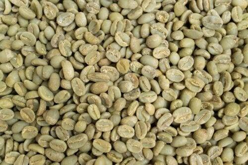 Os benefícios do café verde que você precisa conhecer