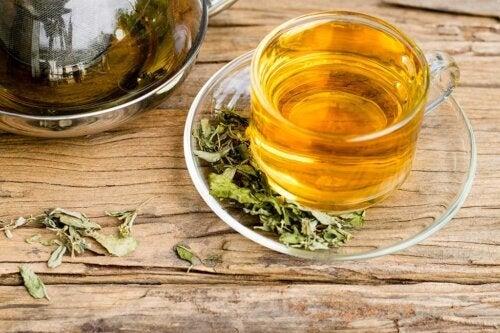 O consumo de chá verde e chá preto reduz o risco de AVC