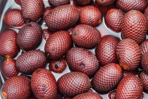 Buriti, uma fruta amazônica