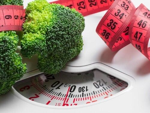 Controlar a quantidade de comida para perder peso